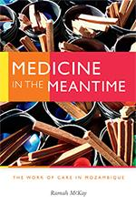 Medicine in the Meantime book cover