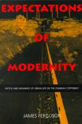 expectations-of-modernity book cover image