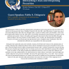 image is of the speaker flyer with Pablo S. Delaporte Bio and Abstract